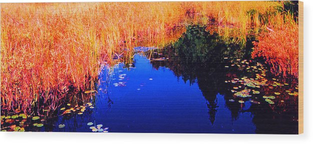 Abstract Wood Print featuring the photograph Still Water Beside The Forest 3 Ae32 by Lyle Crump