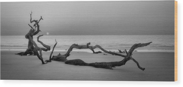 Driftwood Wood Print featuring the photograph Beach Art Cropped In Black An White by Greg Mimbs