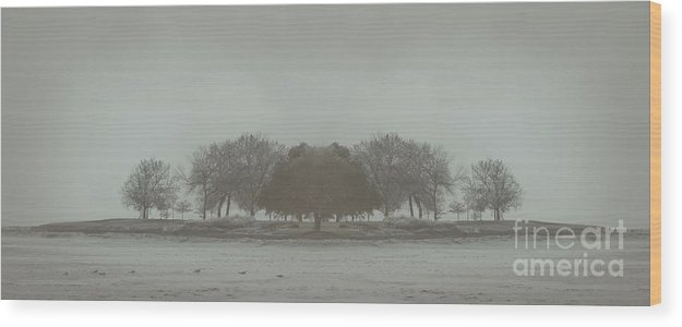 Landscape Wood Print featuring the photograph I Will Walk You Home by Dana DiPasquale