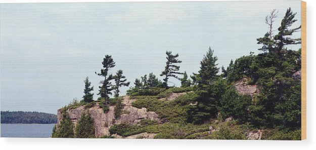 Landscape Wood Print featuring the photograph Small Island by Lyle Crump