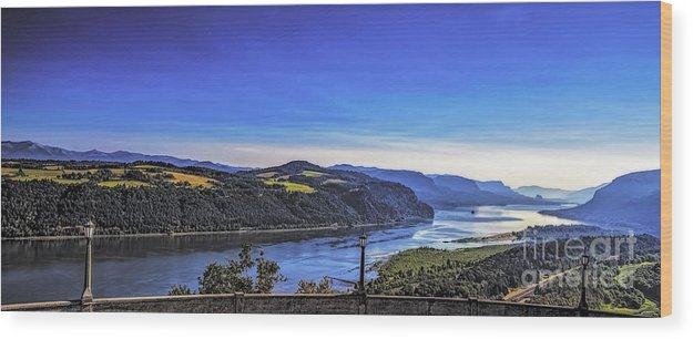 Trees Wood Print featuring the photograph Columbia River Gorge by Nancy Marie Ricketts