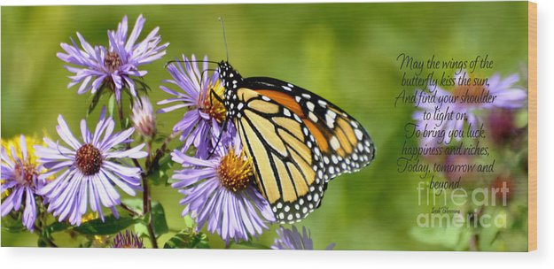 Diane Berry Wood Print featuring the photograph Butterfly Blessing by Diane E Berry