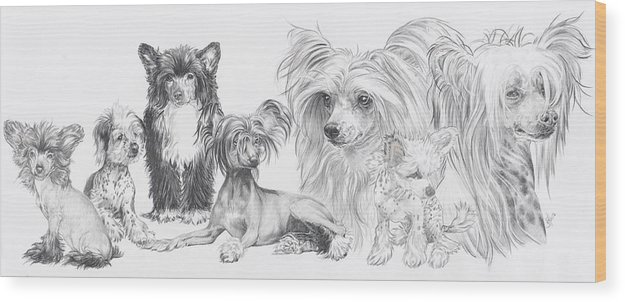 Toy Group Wood Print featuring the drawing The Chinese Crested And Powderpuff by Barbara Keith