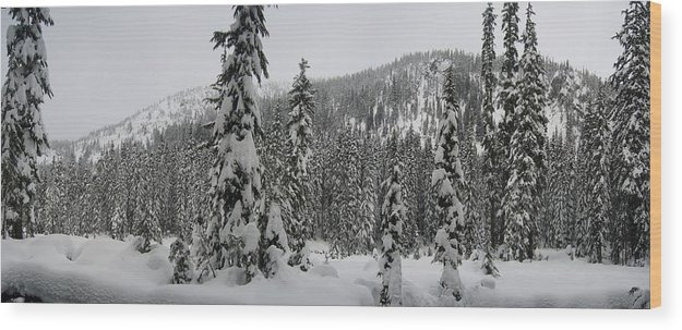 Landscape Wood Print featuring the photograph Winter Beauty by Mark Camp