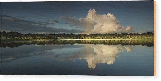 Amazonia Wood Print featuring the photograph Panorama, Anangurocha Lake, Lagoon by Christian Heeb