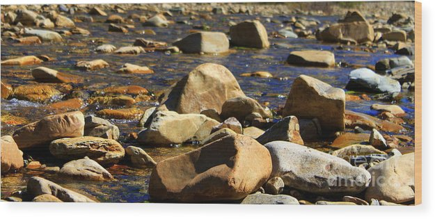 Rocks Wood Print featuring the photograph Pinecreek by Dorothy Hall