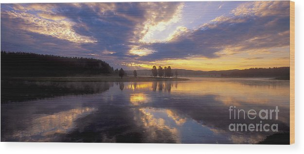 Sandra Bronstein Wood Print featuring the photograph Sunrise Reflections by Sandra Bronstein