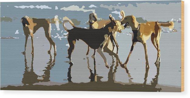 Digital Wood Print featuring the digital art Salukis On The Beach by Frank Vigneri