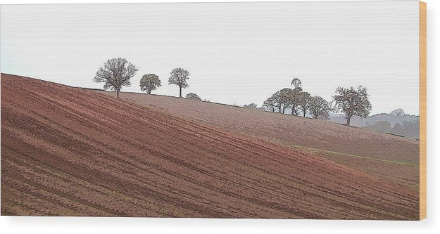 Cheshire Landscape Wood Print featuring the photograph Cheshire Landscape by John Bradburn