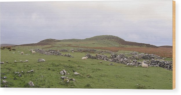 Landscape Wood Print featuring the photograph Road To Waternish Point by Dan Andersson