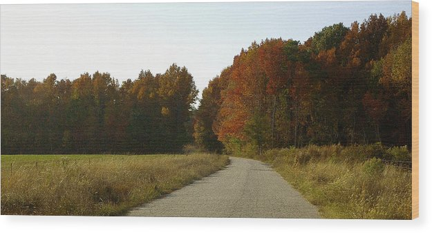 Fall Wood Print featuring the photograph Autumn Road by Travis Aston