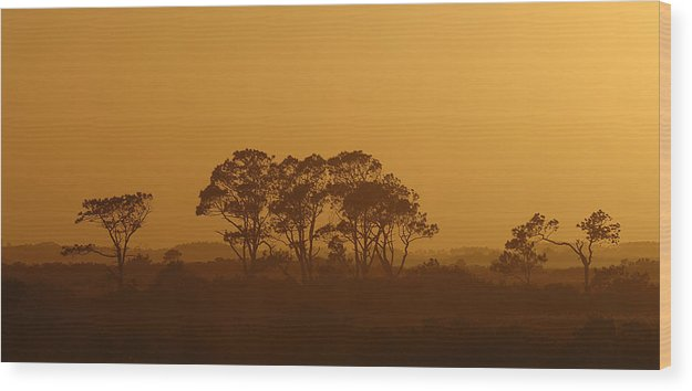 Sunset Wood Print featuring the photograph Western Sky by Travis Aston