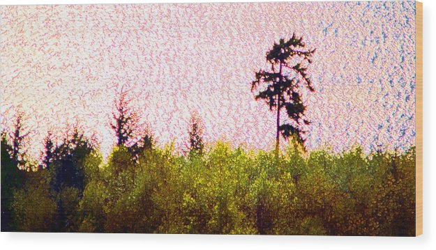 Landscape Wood Print featuring the photograph From The Hill 2 Ae 2 by Lyle Crump