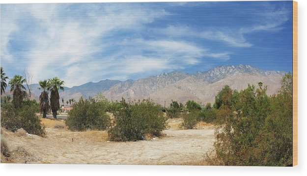 Desert Wood Print featuring the photograph Mojave Pan 2 by Chuck Shafer