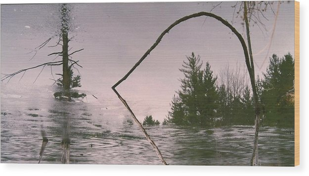 Nature Scene Wood Print featuring the photograph Natures Mirror by Paul Shier