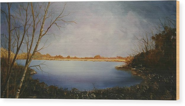 Original Acrylic Landscape Wood Print featuring the painting Rotary Pond by Sharon Steinhaus