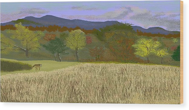 Hills Wood Print featuring the digital art Hill Country Colors by Carole Boyd