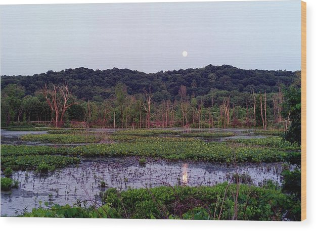 Pond Wood Print featuring the photograph 080706-83 by Mike Davis