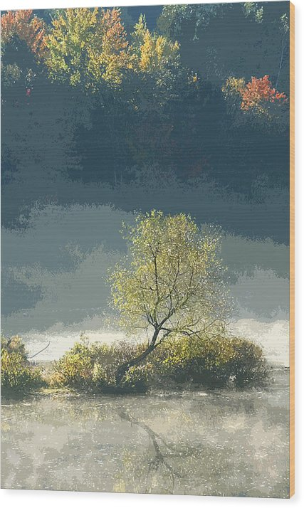 Fine Art Wood Print featuring the photograph Misty Shadows by Michael Vinyard