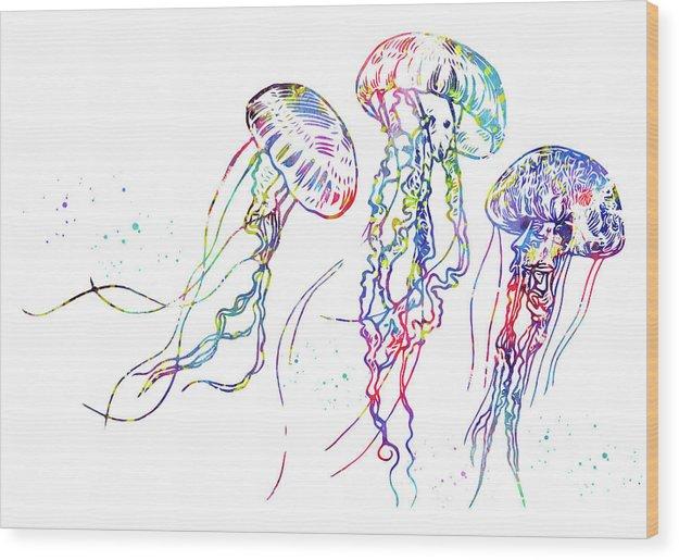 Jellyfish by Erzebet S