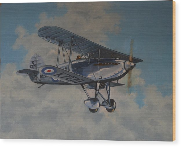 Airplanes Wood Print featuring the painting Fury II RAF by Murray McLeod