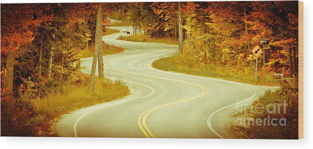Door County Wood Print featuring the photograph Road Bending Through The Trees by Ever-Curious Photography