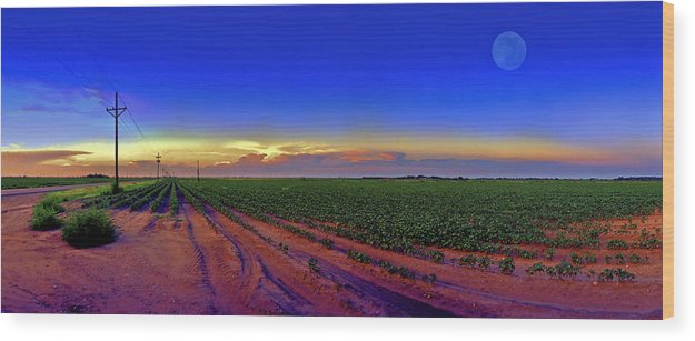 West Texas Wood Print featuring the photograph Serenity by Robert Hudnall