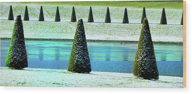 Tranquility Wood Print featuring the photograph Snow Covered Garden by Martial Colomb