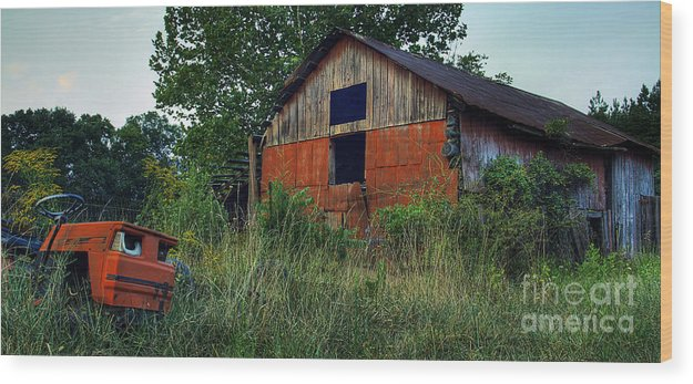 Virginia Wood Print featuring the photograph Lawn Gone by Pete Hellmann