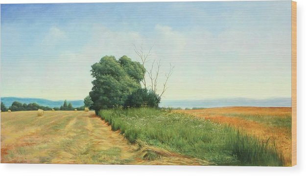 Landscape Wood Print featuring the painting Skaneatles Field by Stephen Bluto