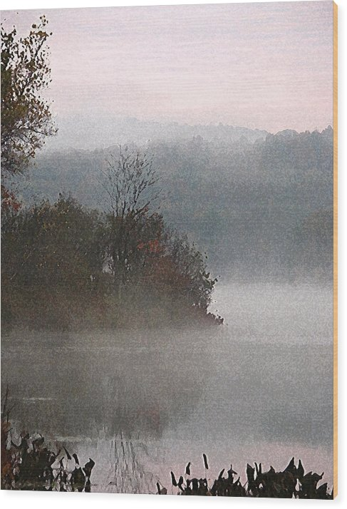 Landscape Wood Print featuring the photograph Misty Lake by Michael Vinyard