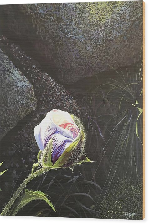 Poppy Wood Print featuring the painting Persistence by Hunter Jay