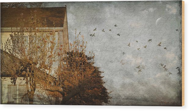 Birds Wood Print featuring the photograph Evening by Inesa Kayuta