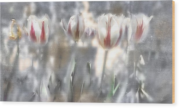 Flowers Wood Print featuring the photograph It Was A Beautiful Day by Inesa Kayuta