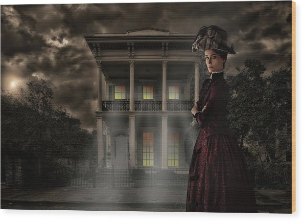 Wood Print featuring the photograph Garden District #8 by David Palmer