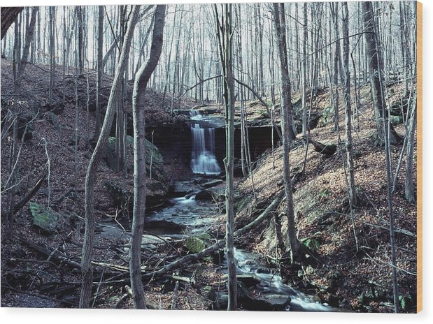 Waterfall Wood Print featuring the photograph 111990-2 by Mike Davis