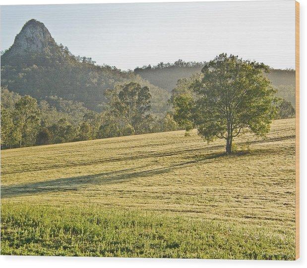 Amaroo Wood Print featuring the photograph Amaroo Landscape - Paisaje De Amaroo by Felix Mazo