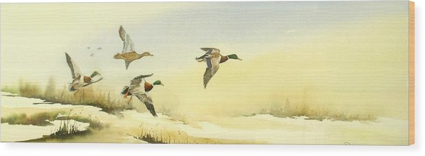 Mallard Ducks Wood Print featuring the painting Flying Over by Lynne Parker