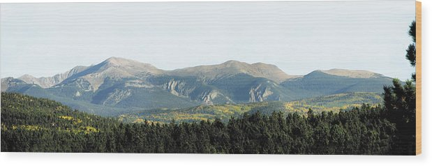 Mountain Wood Print featuring the photograph Wheeler From Bobcat Pass by Kenny King