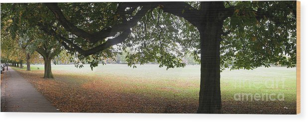 Panorama Wood Print featuring the photograph Abstract Panorama Of Landscape Triptych by Richard Morris