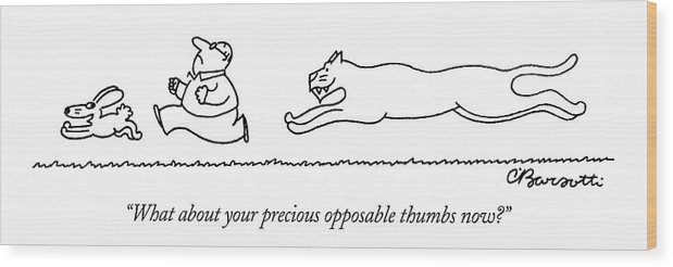 Bunny And Man Being Chased By Tiger.  (bunny And Man Being Chased By Tiger.) 122810 Cba Charles Barsotti Wood Print featuring the drawing What About Your Precious Opposable Thumbs Now? by Charles Barsotti