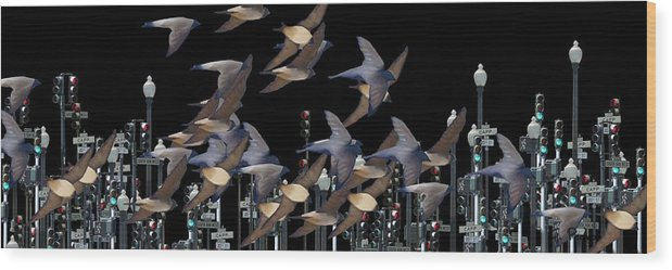 Swallows Wood Print featuring the photograph Swallows In The City by George Pedro