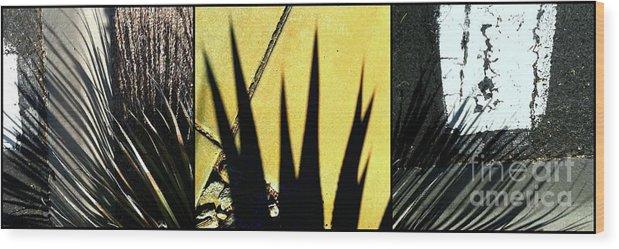 Marlene Burns Wood Print featuring the photograph Palm Reader by Marlene Burns