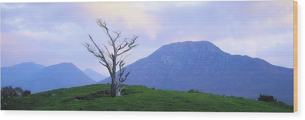 Beauty In Nature Wood Print featuring the photograph Twelve Bens, Connemara, Co Galway by The Irish Image Collection