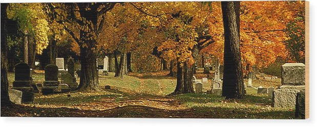Fall Wood Print featuring the photograph Cemetary Road In Autumn by Roger Soule