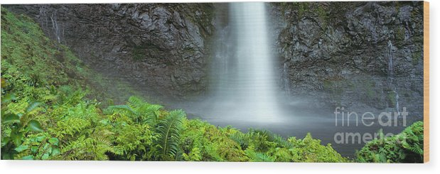Active Wood Print featuring the photograph Kauai Inland Falls by David Cornwell/First Light Pictu - Printscapes