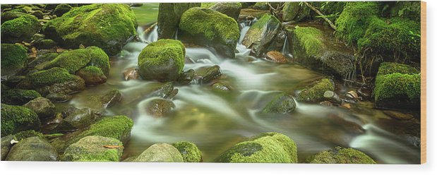 Roaring Fork Wood Print featuring the photograph Roaring Fork Cascade by Stephen Stookey