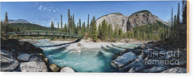 British Columbia Wood Print featuring the photograph Takakkaw Falls by Brad Allen Fine Art
