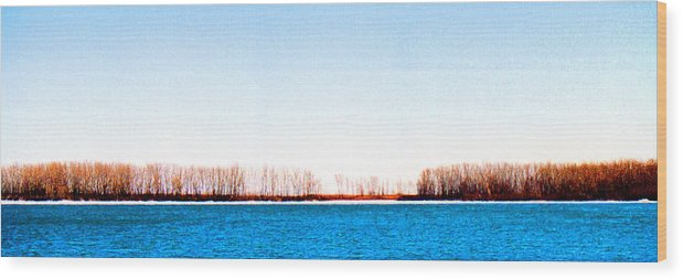 Landscape Wood Print featuring the photograph Leslie Spit From Cherry Beach 33 Dbae by Lyle Crump