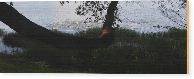 Tree Near The Water Wood Print featuring the photograph Tree Near The Water3 by John Hiatt